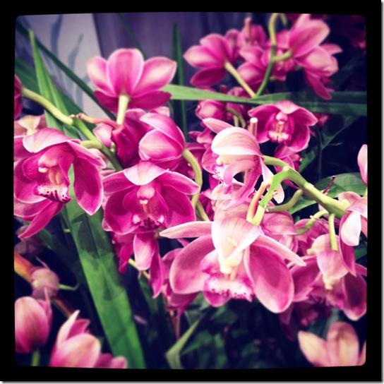 Botanical Gardens2