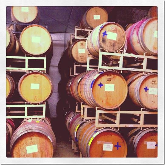 wine tasting3