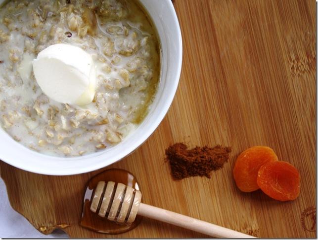Apricot oatmeal2